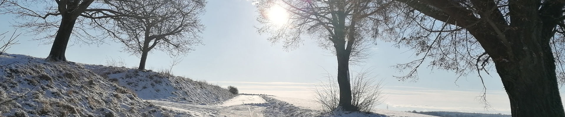 Evi Mittenberger – Header Winterlandschaft Treidelheim Jan. 2021